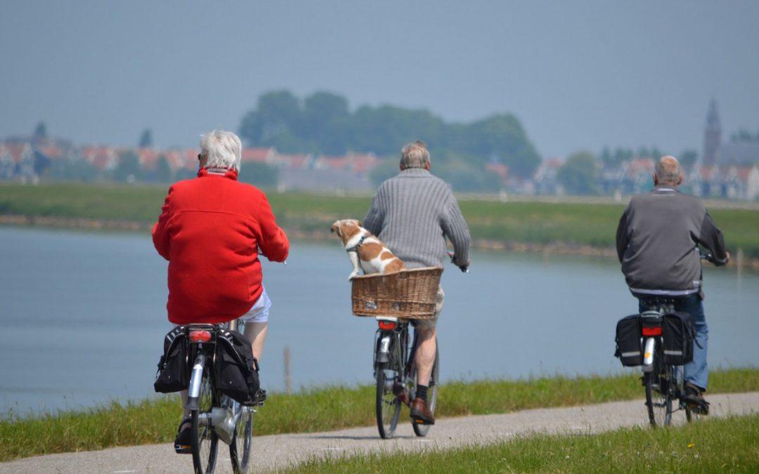 Principales reformas del sistema de pensiones de jubilación